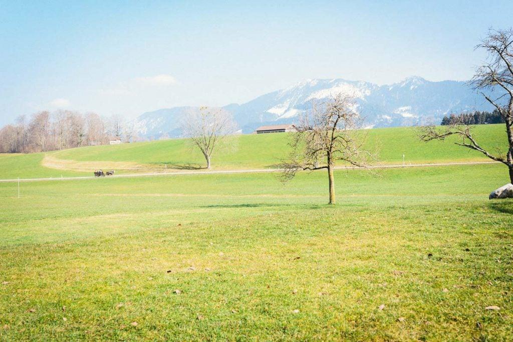 Landschaftsbild der Alpen.